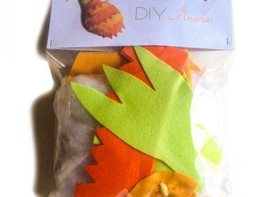 DIY Ananas blister recto